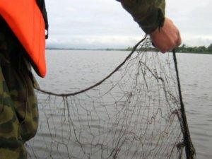 Клетнянские рыбаки оштрафованы на миллион за 33 хвоста