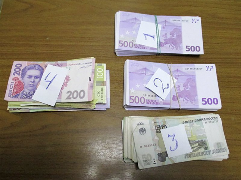 Брянские таможенники остановили дальнобойщика из Греции с сотней тысяч евро