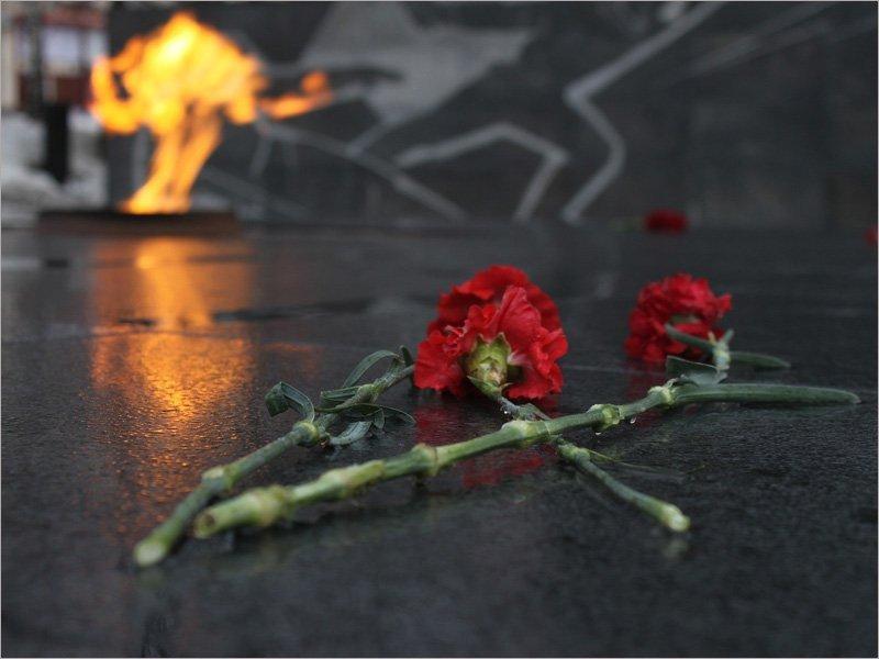 «Защитим память героев»: «Единая Россия» проводит акцию в День защитника Отечества