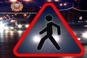 В Брянской области за два дня отловили 240 пешеходов-нарушителей