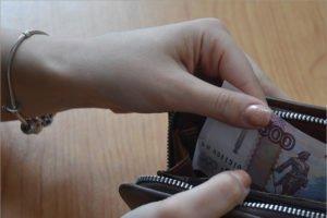 «ЕР» внесла в Госдуму законопроект о защите минимального гарантированного дохода от списания за долги