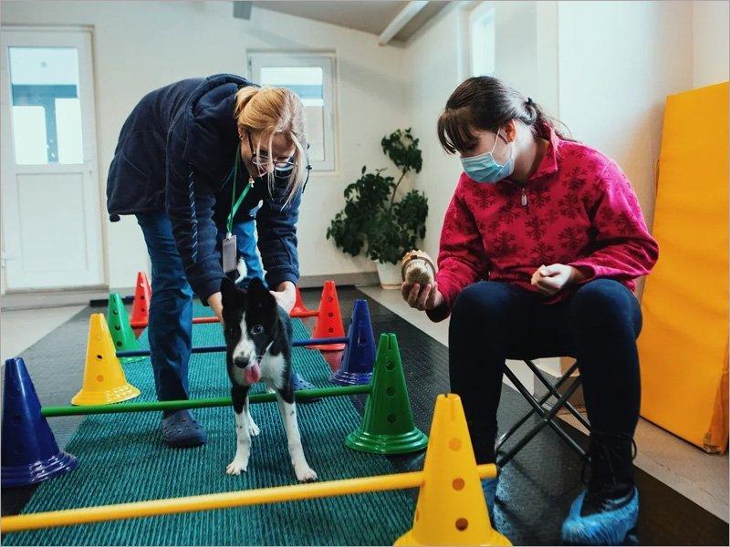 Фонд «Движение вверх» на время сделал особенного ребёнка ветеринаром