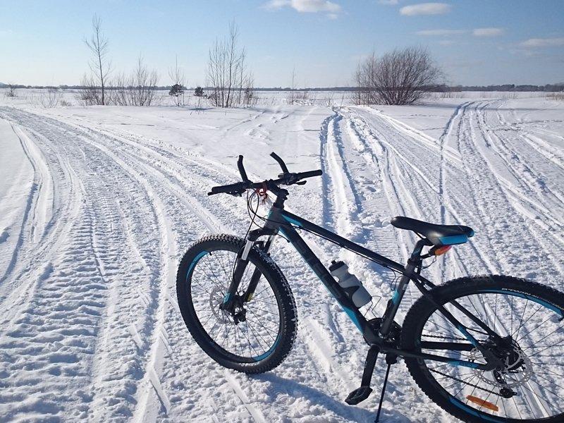 Сельцовский любитель выпить украл велосипед ради очередной бутылки