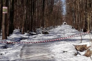 В Брянске предполагаемой убийцей сожжённого младенца может быть 18-летняя студентка — СМИ
