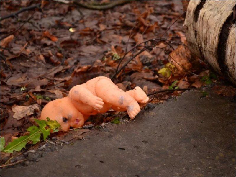 В городском лесу в Брянске  обнаружено обгоревшее тело младенца. Идёт доследственная проверка