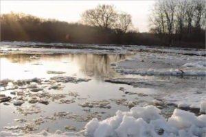 Минприроды ожидает вскрытия брянских рек в третьей декаде марта
