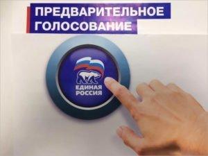 Праймериз «Единой России» пройдут по первой, самой открытой и конкурентной модели