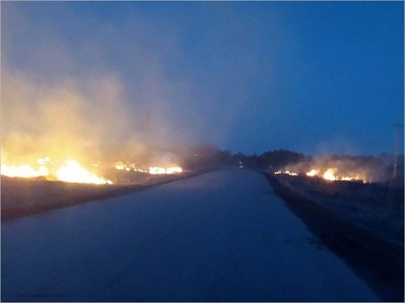 В Фокино ночью cгорело несколько гектаров сухой травы