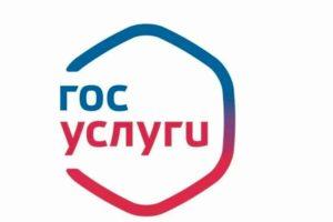 Во всех регионах России будет запущена цифровая платформа «Госуслуги. Решаем вместе» – Чернышенко