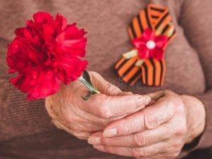 В Брянске вдове ветерана Великой Отечественной войны не дают жильё