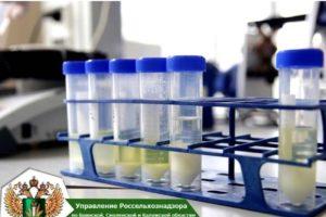 Брянский молкомбинат оштрафован за «растительные» продукты с антибиотиками. Повторно