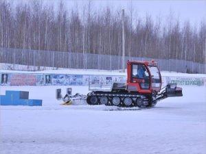 Филиалы брянской СДЮСШОР по лыжному спорту будут открыты в шести районах области