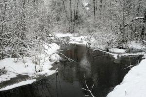 Малые реки Брянской области начали вскрываться от льда и выходить на пойму