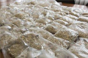 Брянские таможенники нашли у украинского дальнобойщика 30 кг серебряной контрабанды