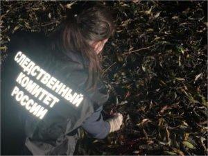 Ушло в суд дело о поножовщине и убийстве в стародубском парке