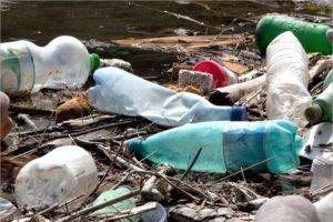 Контейнеры для раздельного сбора мусора в районах Брянской области будут установлены к 2027 году