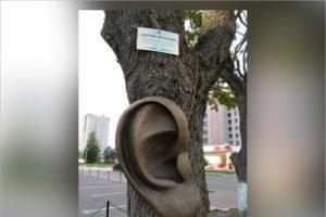Брянское «ушастое дерево» попало в реестр самых необычных скульптур России