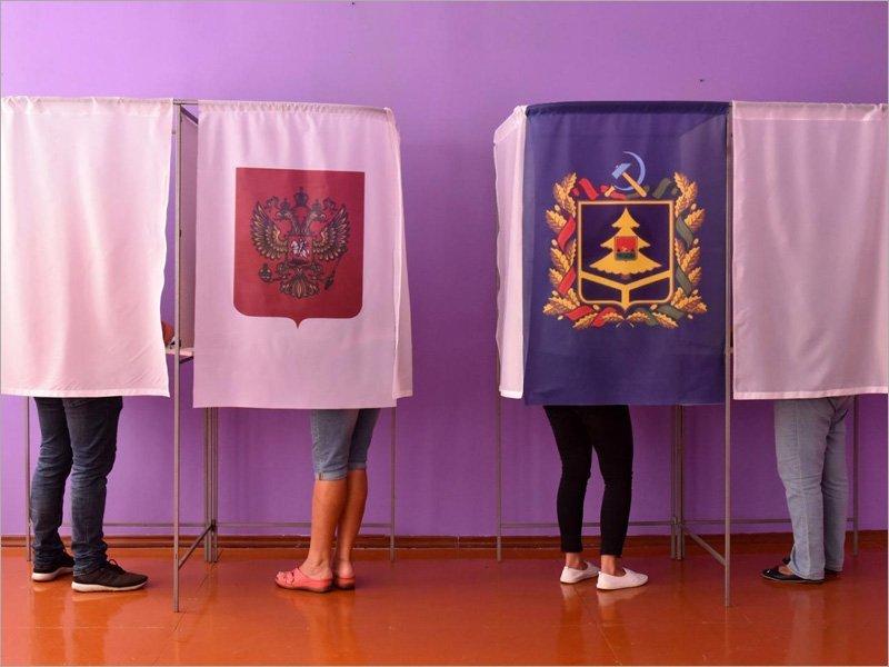 В Брянской области десять партий выставили на выборах в Госдуму 18 человек. Плюс один самовыдвиженец