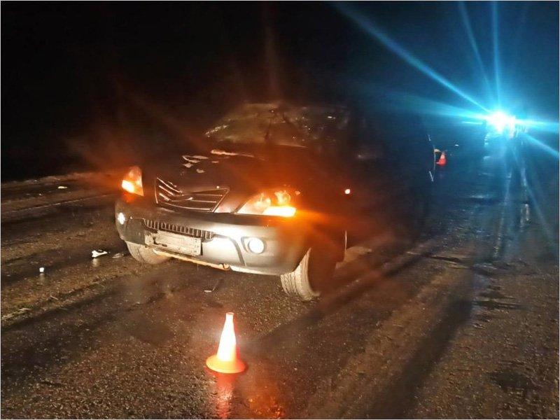 На федеральной трассе у Злынки под колёсами погиб неизвестный пешеход
