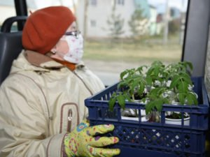 В Брянске возобновил работу дачный маршрут №110