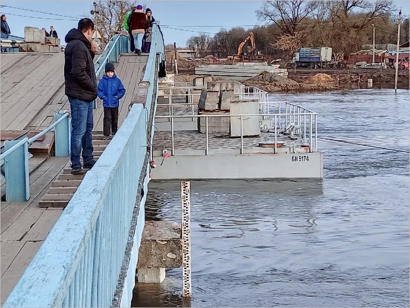 Вода в Десне в черте Брянска продолжает прибывать
