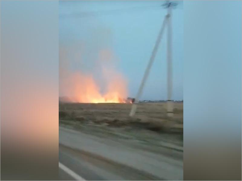 За три недели в Брянской области произошло более 450 пожаров, связанных с палами сухой травы