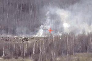В среднем в Брянской области за день фиксируется 25 ландшафтных пожаров