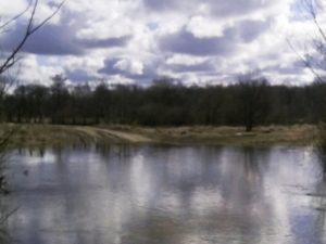 В Рогнединском районе паводок затопил местную дорогу