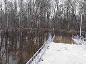 Подъём воды в Десне и Болве практически прекратился, в Брянске полностью ушли под воду пляжи