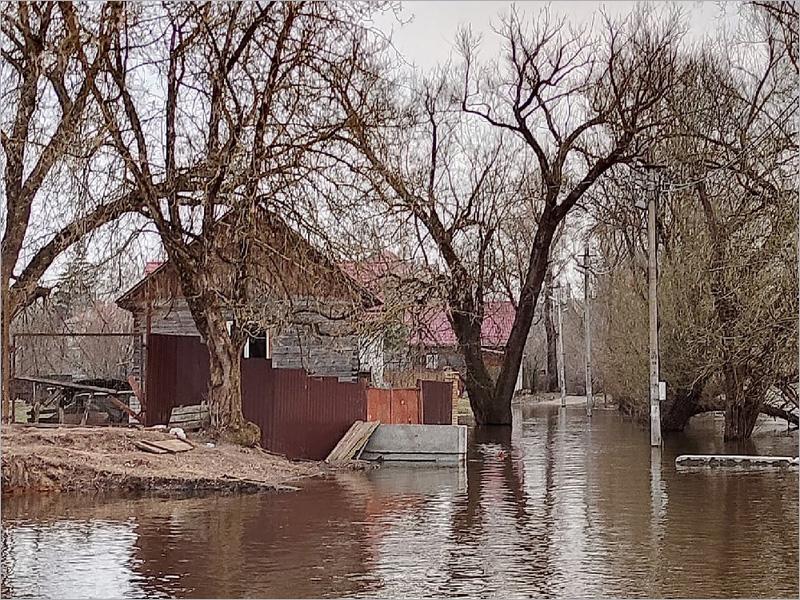 Паводок-2021 в Брянске: в Болве вода падает, в Десне — продолжает подниматься