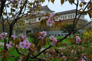 Сакура цветёт. Японские лидеры предпочитают не нарываться. Апрель…