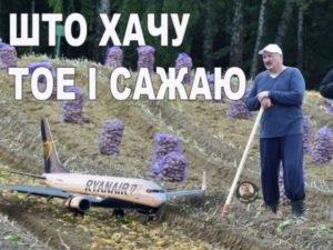 Спасибо Батьке: авиарейсы из Брянска в Калининград могут закончиться, толком не начавшись