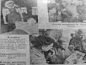 В лесу у Голубого моста брянские железнодорожники нашли «информационную бомбу»