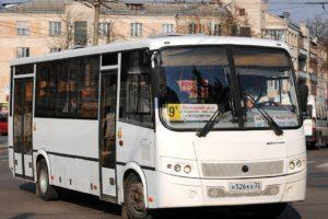 В Брянске добавили дополнительные рейсы по автобусным маршрутам № 10 и 19