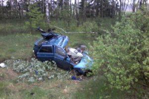 Смертельное ДТП на трубчевской трассе: водитель вылетел в кювет и погиб