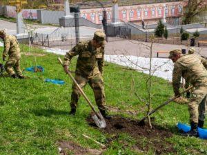 Брянские росгвардейцы высадили дубы в будущем Саду Победы у «Дубравы». И решили взять их под охрану