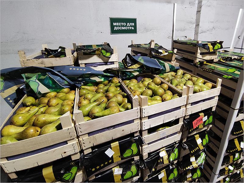 Брянская таможня отчиталась о расследовании месячной давности дела белорусского конвоя с фруктами