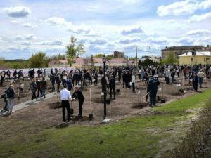 В историческом центре Брянска заложили фруктовый Сад Победы