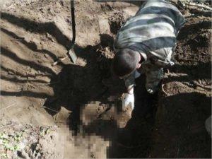 Брянские поисковики подняли останки красноармейца у посёлка Локоть
