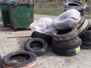 «Сдай шины – спаси бобра!»: брянский мусорный оператор бесплатно принимает шины с самодоставкой