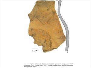 Нефтяники из «Транснефть – Дружба» обеспечили сохранность археологических находок