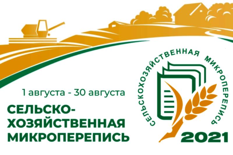 Первая сельскохозяйственная микроперепись пройдёт в августе 2021 года – Росстат