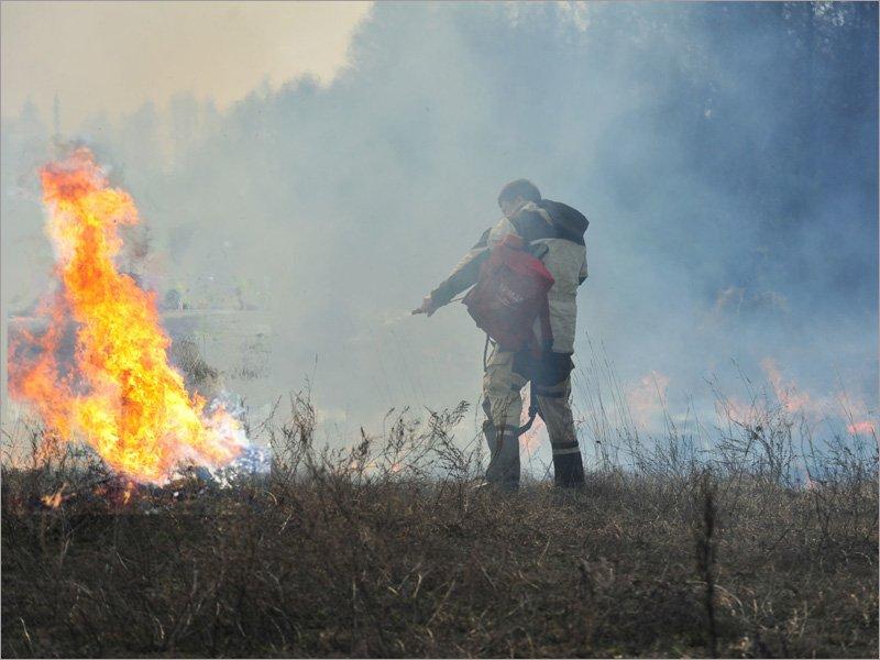 С начала года в Брянской области палы травы вызвали более 1,1 тыс. пожаров
