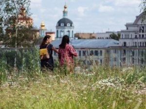 Как расцветает «зелёная» урбанистика в России