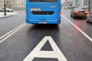 Первыми улицами с выделенными полосами в Брянске могут стать улицы Бежицы