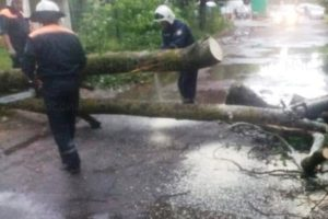 В Брянске за субботу выпала почти половина месячной нормы осадков