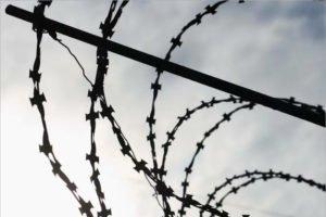 Суд признал группу Rammstein любимым саундтреком для избиения заключённых в брянских колониях