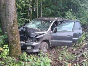 Женщина-водитель под Брянском протаранила дерево: трое получили травмы