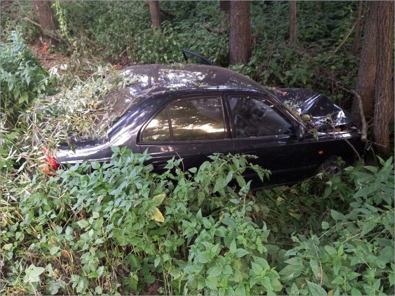 Под Новозыбковом водитель сломал шею, врезавшись в дерево
