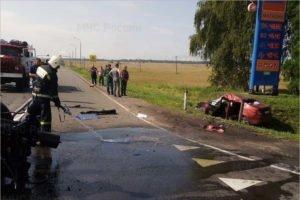 На «Украине» в Брянской области друг в друга врезались трактор и легковушка, есть пострадавший